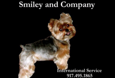 Smiley Castellar Rodriguez - Smiley Castellar Rodriguez - Pet Groomer in New York City on Romio.com