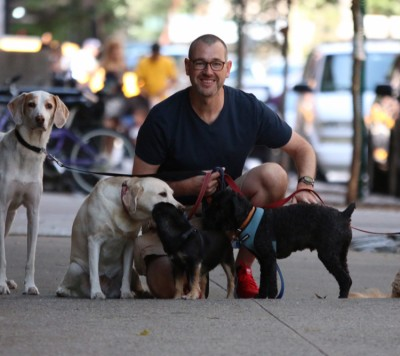 Tommy Cooke - Tommy Cooke - Dog Walker in New York City on Romio.com