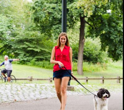 Shelby Semel - Shelby Semel - Pet Trainer in New York City on Romio.com