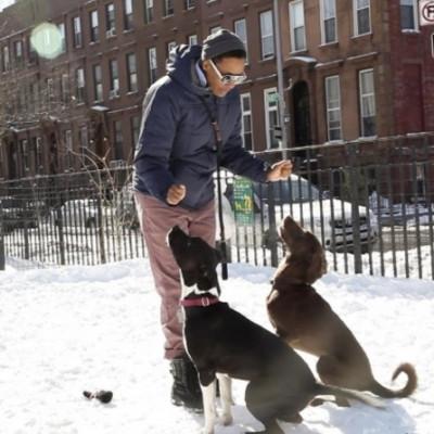 Andrea Smith - Andrea Smith - Pet Trainer in New York City on Romio.com