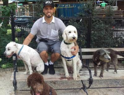 Marc San - Marc San - Dog Walker in New York City on Romio.com