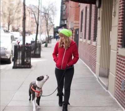 Kate Senisi - Kate Senisi - Pet Trainer in New York City on Romio.com