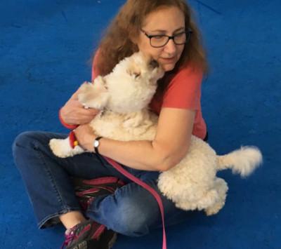 Nancy Field - Nancy Field - Pet Trainer in New York City on Romio.com