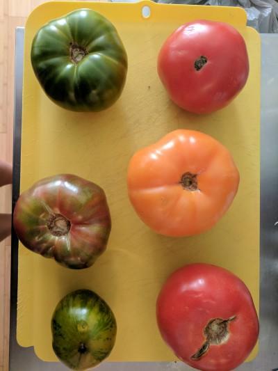 Linda Rosenblatt - Linda Rosenblatt - Personal Chef in New York City on Romio.com