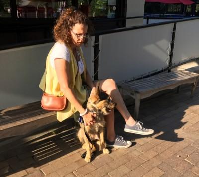 Sarah Hodgson - Teaching dogs training people