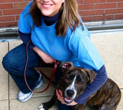 Mary Molloy - Mary Molloy - Pet Trainer in New York City on Romio.com