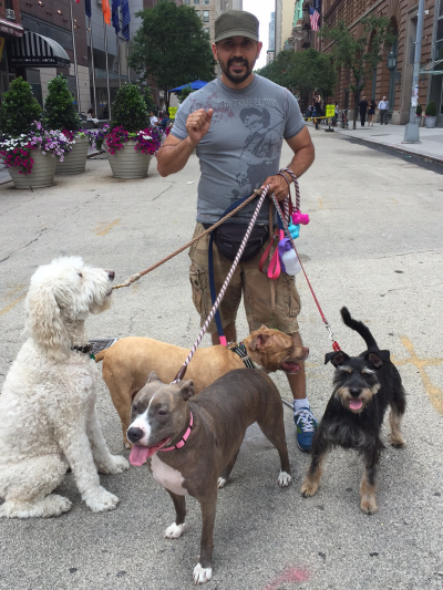 Oscar Restrepo - Oscar Restrepo - Dog Walker in New York City on Romio.com