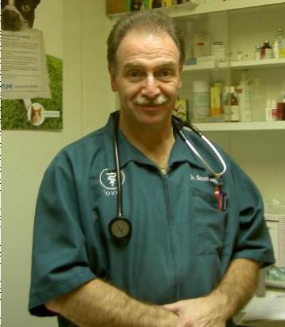 Scott Benson - Scott Benson - Veterinarian in New York City on Romio.com