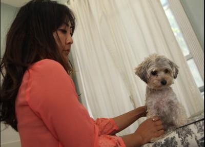 Cynthia Okimoto - Cynthia Okimoto - Pet Groomer in New York City on Romio.com