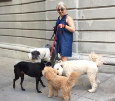 Alissa Rose - Alissa Rose - Dog Walker in New York City on Romio.com