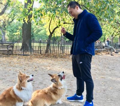 Eric Ho - Eric Ho - Dog Walker in New York City on Romio.com