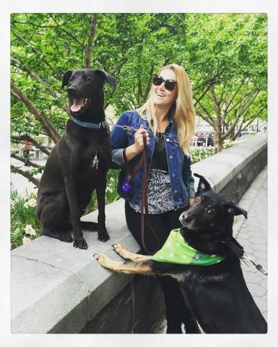 Gwynne Puentevella - Gwynne Puentevella - Pet Sitter in New York City on Romio.com